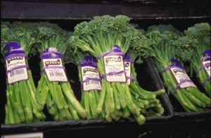 Eating Broccoli Will Not Cure Schizophrenia.